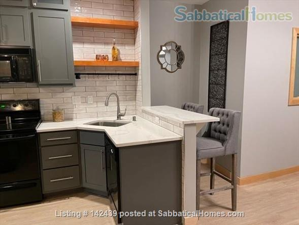 Lg. 1 bed/1 bath 2nd Floor Condo near Capitol Square.  Recently renovated Home Rental in Madison, Wisconsin, United States 0