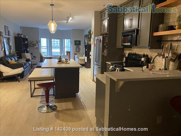 Lg. 1 bed/1 bath 2nd Floor Condo near Capitol Square.  Recently renovated Home Rental in Madison, Wisconsin, United States 2