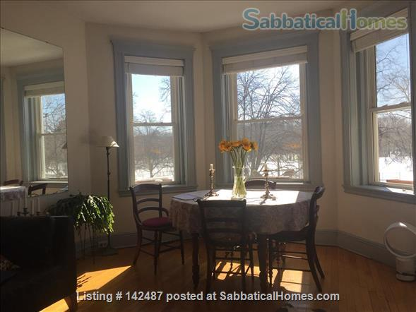 Park view, Fenway neighborhood, sunny 2d floor one bedroom.  Home Rental in Boston, Massachusetts, United States 1