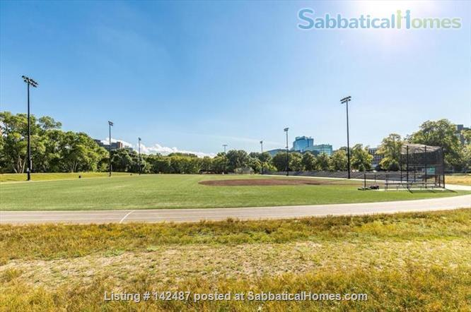 Park view, Fenway neighborhood, sunny 2d floor one bedroom.  Home Rental in Boston, Massachusetts, United States 3