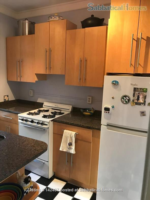 Park view, Fenway neighborhood, sunny 2d floor one bedroom.  Home Rental in Boston, Massachusetts, United States 8