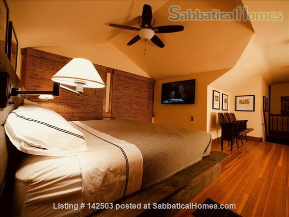 First St House Home Rental in Bloomington, Indiana, United States 9