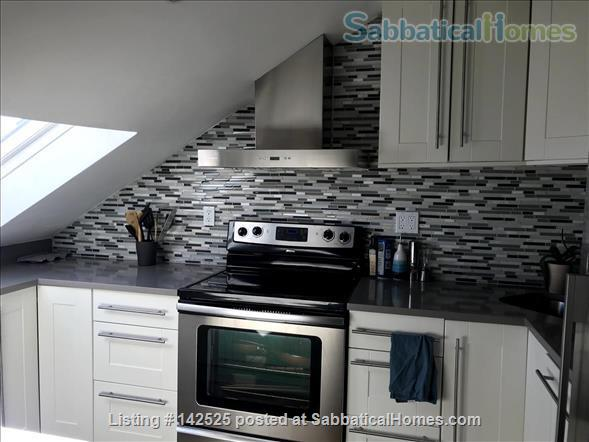 Beautiful and comfortable 2BR in Boston South End - Dec-March ($3,200) Home Rental in Boston, Massachusetts, United States 3