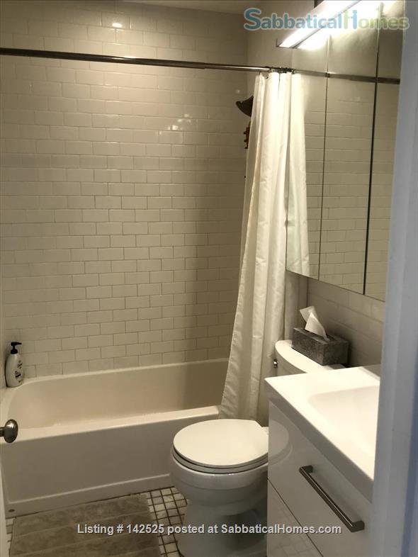 Beautiful and comfortable 2BR in Boston South End - Dec-March ($3,200) Home Rental in Boston, Massachusetts, United States 8