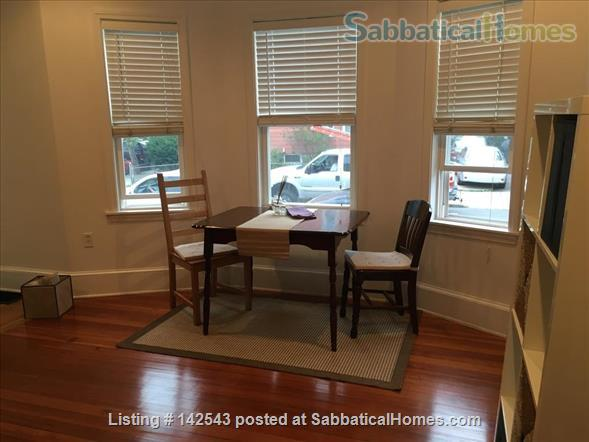 Sunny,  spacious one BR walk to Davis Square and subway Home Rental in Somerville 0