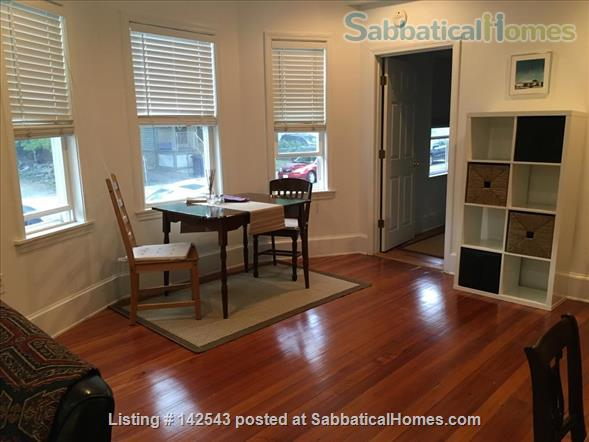 Sunny,  spacious one BR walk to Davis Square and subway Home Rental in Somerville, Massachusetts, United States 2