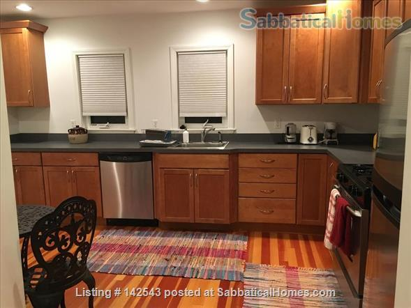 Sunny,  spacious one BR walk to Davis Square and subway Home Rental in Somerville, Massachusetts, United States 3