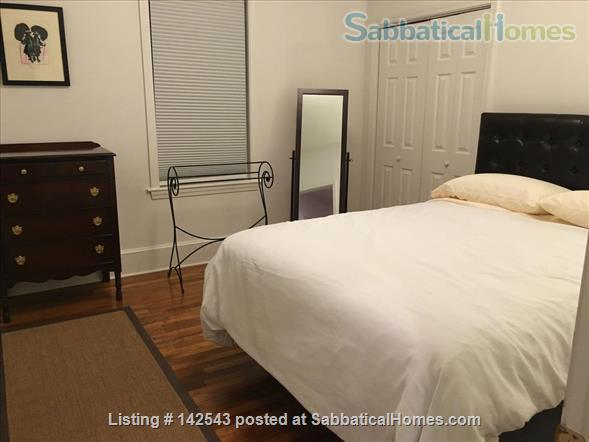 Sunny,  spacious one BR walk to Davis Square and subway Home Rental in Somerville, Massachusetts, United States 4
