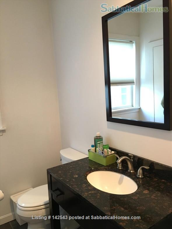 Sunny,  spacious one BR walk to Davis Square and subway Home Rental in Somerville, Massachusetts, United States 5