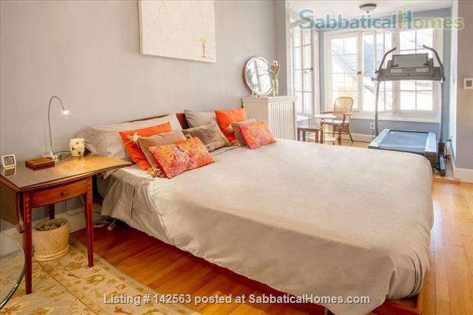 Luxury 3 beds/2baths apartment steps from Porter & Harvard sq! Home Rental in Cambridge, Massachusetts, United States 6