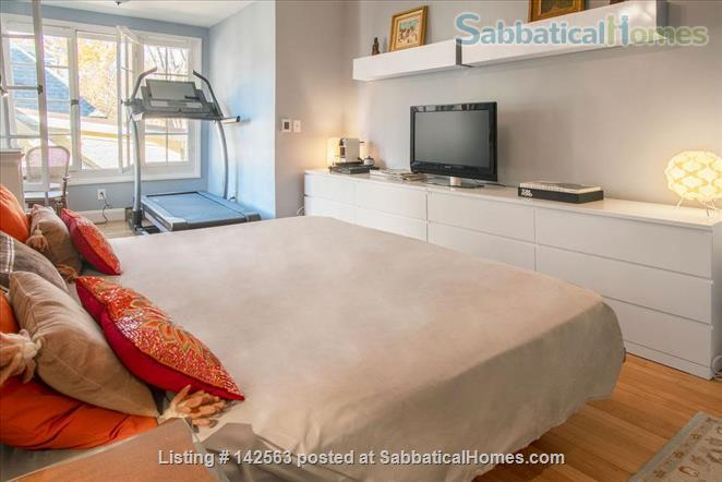 Luxury 3 beds/2baths apartment steps from Porter & Harvard sq! Home Rental in Cambridge, Massachusetts, United States 7