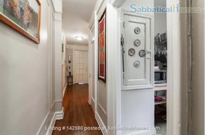 Sun-filled furnished spacious 2BR/1Bath Prospect Lefferts Gardens, Brooklyn Home Rental in Flatbush, New York, United States 1