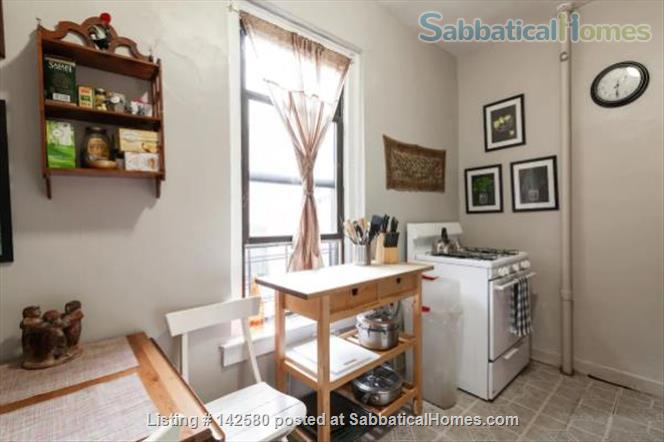 Sun-filled furnished spacious 2BR/1Bath Prospect Lefferts Gardens, Brooklyn Home Rental in Flatbush, New York, United States 0