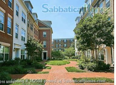 Walkable Arlington, VA townhome with ample parking Home Rental in Arlington, Virginia, United States 0