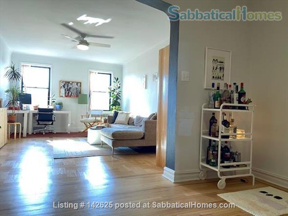 Huge Sun-Drenched Furnished 1-BR with Breakfast Nook / 2nd Workspace Home Rental in Prospect Lefferts Gardens, New York, United States 1