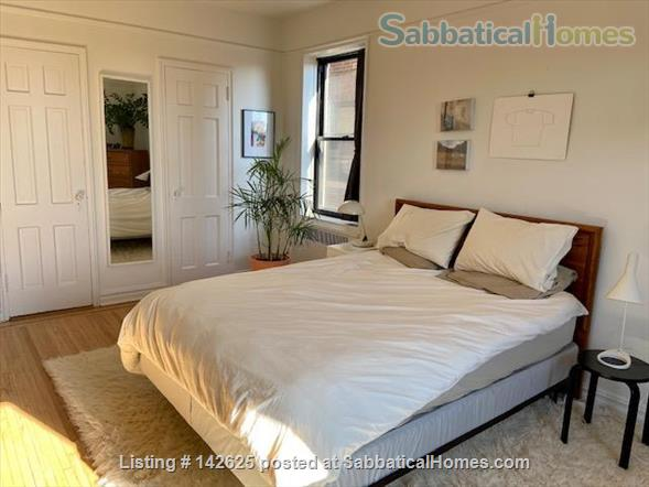 Huge Sun-Drenched Furnished 1-BR with Breakfast Nook / 2nd Workspace Home Rental in Prospect Lefferts Gardens, New York, United States 7