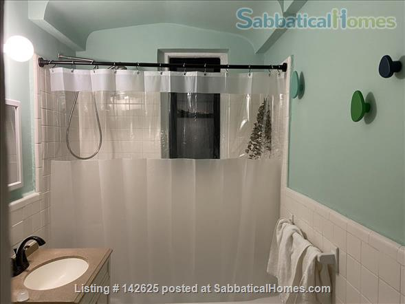 Huge Sun-Drenched Furnished 1-BR with Breakfast Nook / 2nd Workspace Home Rental in Prospect Lefferts Gardens, New York, United States 8