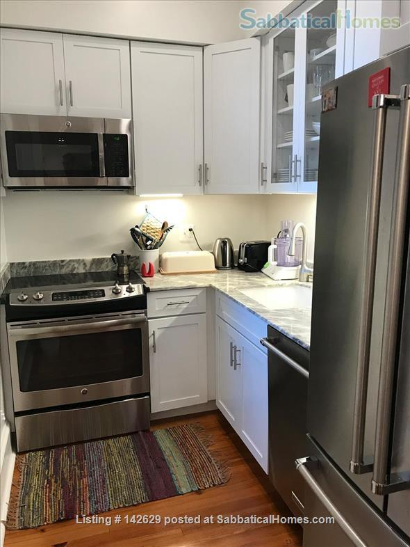 Fully furnished flat in historic Capitol Hill Home Rental in Washington, District of Columbia, United States 3