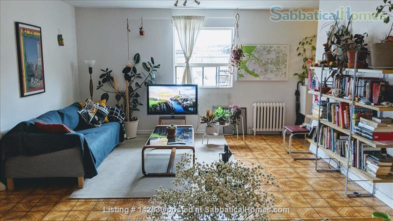 Bright and Large Bedroom in Quiet Downtown Toronto apartment Home Rental in Toronto 1