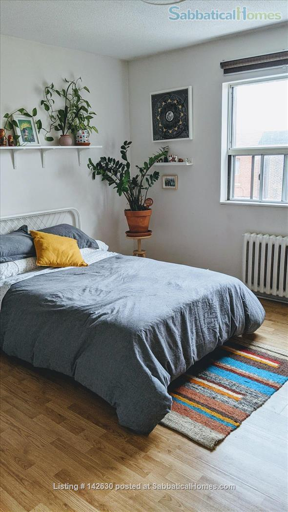 Bright and Large Bedroom in Quiet Downtown Toronto apartment Home Rental in Toronto 0