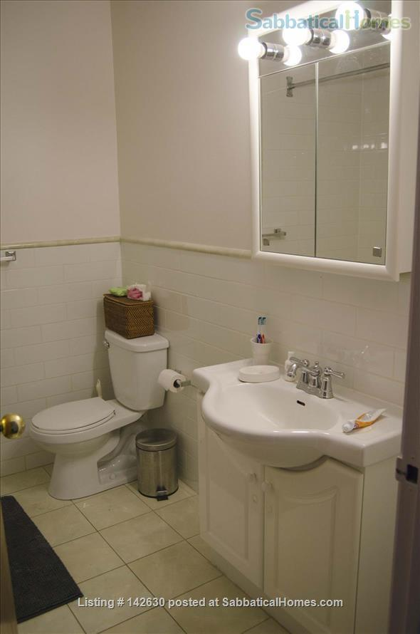 Bright and Large Bedroom in Quiet Downtown Toronto apartment Home Rental in Toronto 3