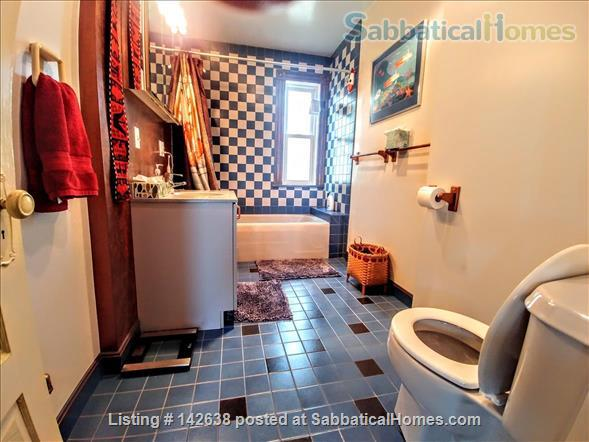2 bedroom home with yard near MIT, Harvard, BU and Longwood Home Rental in Cambridge, Massachusetts, United States 5
