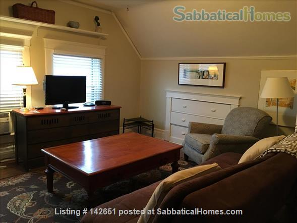 Beautiful fully furnished efficiency downtown Ann Arbor  Home Rental in Ann Arbor, Michigan, United States 5