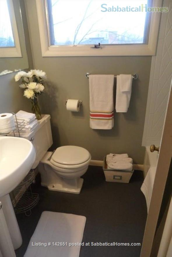 Beautiful fully furnished efficiency downtown Ann Arbor  Home Rental in Ann Arbor, Michigan, United States 8