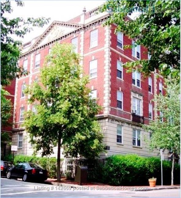 Furnished 1BR / Harvard Square Cambridge / Historic Residential Neighborhood Home Rental in Cambridge, Massachusetts, United States 2