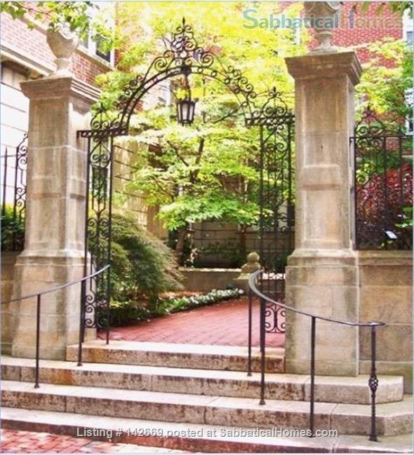 Furnished 1BR / Harvard Square Cambridge / Historic Residential Neighborhood Home Rental in Cambridge, Massachusetts, United States 3