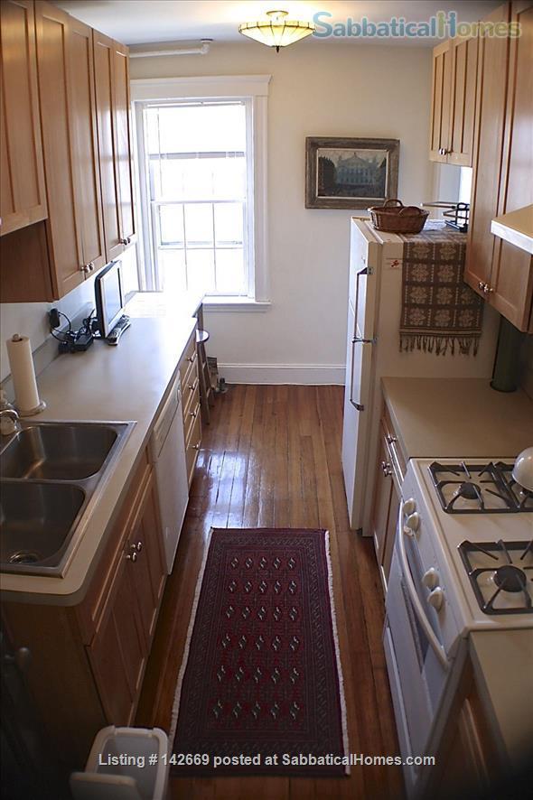 Furnished 1BR / Harvard Square Cambridge / Historic Residential Neighborhood Home Rental in Cambridge, Massachusetts, United States 4