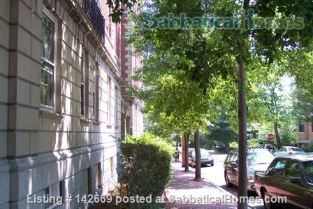 Furnished 1BR / Harvard Square Cambridge / Historic Residential Neighborhood Home Rental in Cambridge, Massachusetts, United States 7