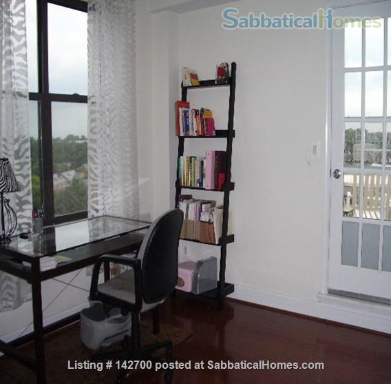 Beautiful penthouse with private rooftop terrace with parking, gym,  Home Rental in Washington, District of Columbia, United States 4