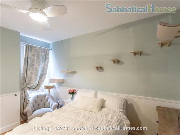 Charming Capitol Hill Rowhouse  Home Rental in Washington, District of Columbia, United States 6