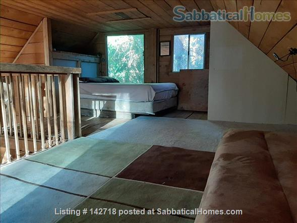 Cozy Cabin on the Gulf Islands. Home Rental in Galiano Island 9 - thumbnail