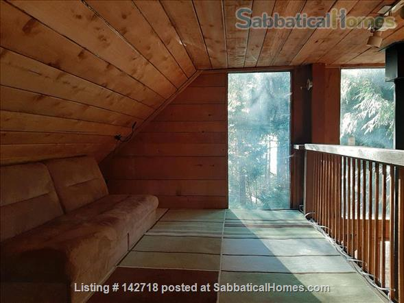 Cozy Cabin on the Gulf Islands. Home Rental in Galiano Island 8 - thumbnail