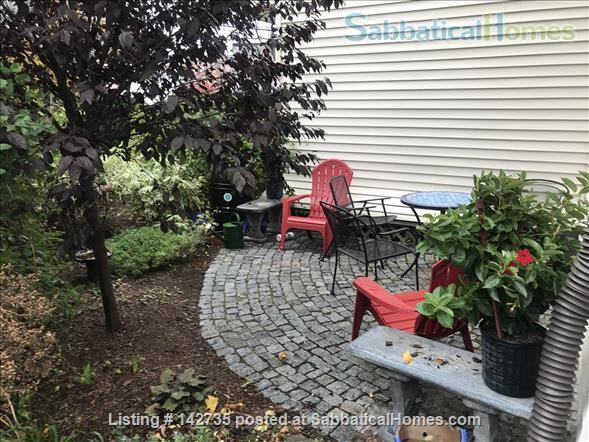 Spacious 1B 1BR for Spring 2021 in Union Square, Somerville Home Rental in Somerville, Massachusetts, United States 1