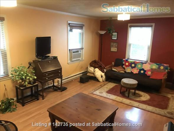 Spacious 1B 1BR for Spring 2021 in Union Square, Somerville Home Rental in Somerville, Massachusetts, United States 0
