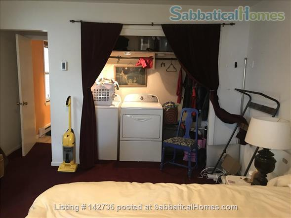 Spacious 1B 1BR for Spring 2021 in Union Square, Somerville Home Rental in Somerville, Massachusetts, United States 4