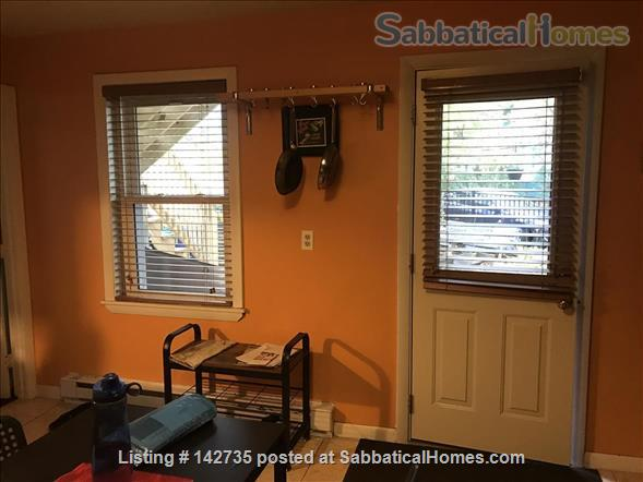 Spacious 1B 1BR for Spring 2021 in Union Square, Somerville Home Rental in Somerville, Massachusetts, United States 5