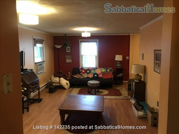 Spacious 1B 1BR for Spring 2021 in Union Square, Somerville Home Rental in Somerville, Massachusetts, United States 6