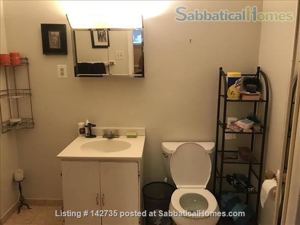 Spacious 1B 1BR for Spring 2021 in Union Square, Somerville Home Rental in Somerville, Massachusetts, United States 7