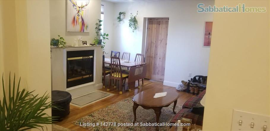 2 bedroom apartment in walking distance of Harvard campus between June20-Oct7  2021 (minimum 3 month!) Home Rental in Somerville, Massachusetts, United States 1