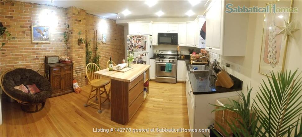 2 bedroom apartment in walking distance of Harvard campus between June20-Oct7  2021 (minimum 3 month!) Home Rental in Somerville, Massachusetts, United States 0