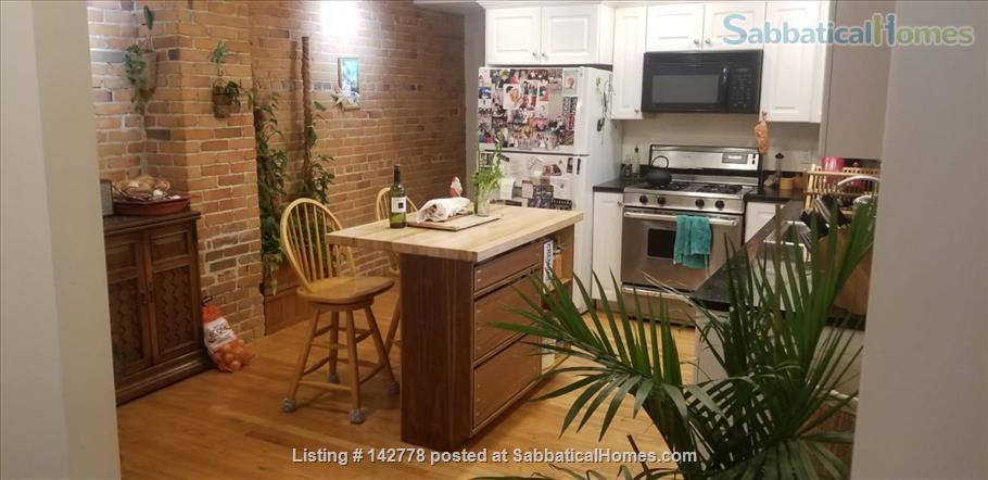 2 bedroom apartment in walking distance of Harvard campus between June20-Oct7  2021 (minimum 3 month!) Home Rental in Somerville, Massachusetts, United States 2