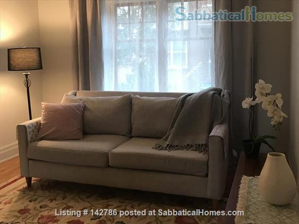 Walk to downtown, hospitals and universities! Home Rental in Toronto, Ontario, Canada 2