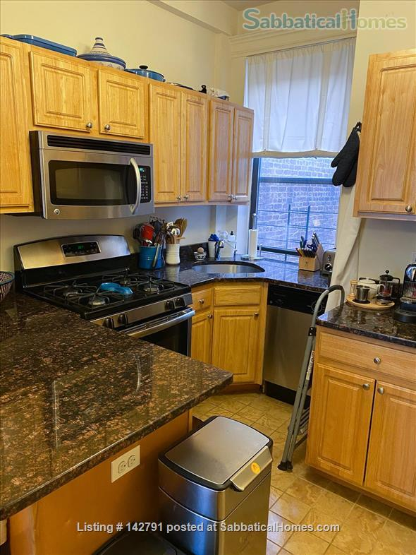 1bd in Heart of Beautiful Park Slope Brownstone. Next to Prospect Park, Ideal WFH space, Dishwasher+Washer/Dryer in Unit  Home Rental in Kings County, New York, United States 0