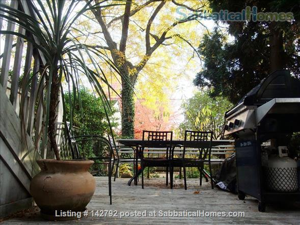 Beautiful bright 1 bdrm apartment on Bickford Park (Little Italy/Bloorcourt) Home Rental in Toronto, Ontario, Canada 7