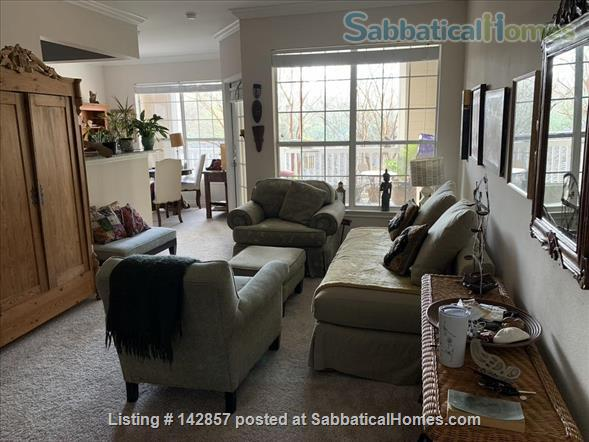 Sunny, Southpoint apartment near Duke, UNC-Chapel Hill, NC State Home Rental in Durham 0