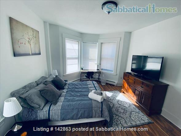 Furnished 1 Bedroom Apartment In Heart of Wooster Square Home Rental in New Haven, Connecticut, United States 5